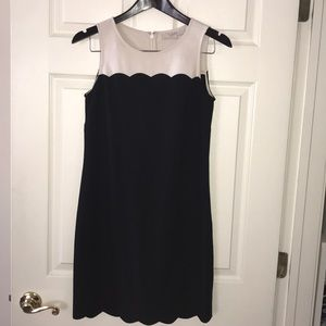 LOFT Black & White Sheath Dress - Sz 2